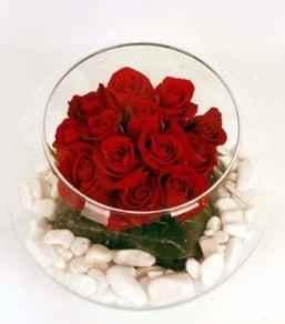 Cam fanusta 11 adet kırmızı gül  Kastamonu çiçek gönderme