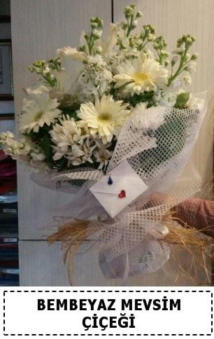 Bembeyaz görsel mevsim çiçek buketi  Kastamonu çiçek yolla