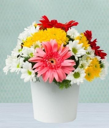 Seramik Vazoda Gelbera ve Papatya  Kastamonu çiçek gönderme