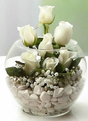 Beyaz Mutluluk 9 beyaz gül fanusta  Kastamonu çiçek siparişi sitesi