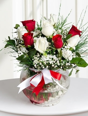 Aşk Küresi  5 beyaz 5 kırmızı gül fanusta  Kastamonu internetten çiçek satışı