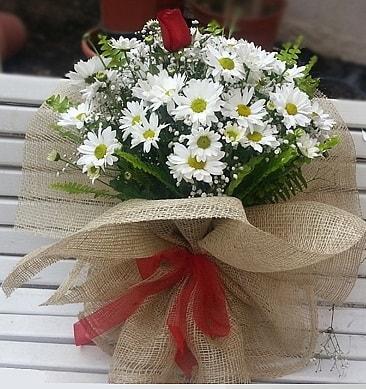 Papatya 1 adet kırmızı gül buketi  Kastamonu çiçekçiler
