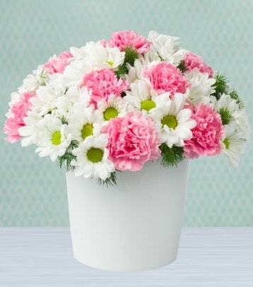 Seramik vazoda papatya ve kır çiçekleri  Kastamonu çiçek siparişi sitesi