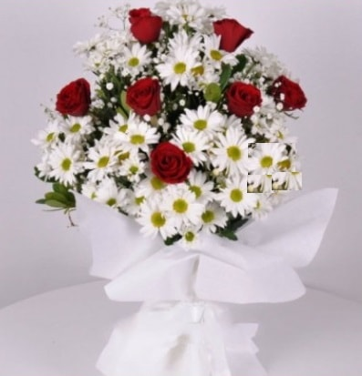 7 adet kırmızı gül ve papatyalar krizantem  Kastamonu internetten çiçek satışı