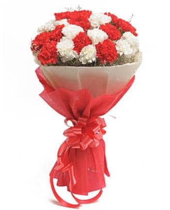 21 adet kırmızı beyaz karanfil buketi  Kastamonu çiçek satışı