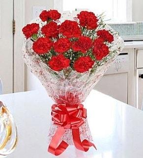 12 adet kırmızı karanfil buketi  Kastamonu İnternetten çiçek siparişi