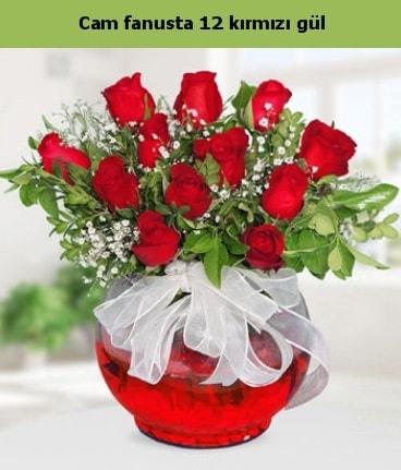 Cam içerisinde 12 adet kırmızı gül  Kastamonu internetten çiçek satışı