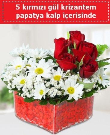 mika kalp içerisinde 5 kırmızı gül papatya  Kastamonu çiçek gönderme