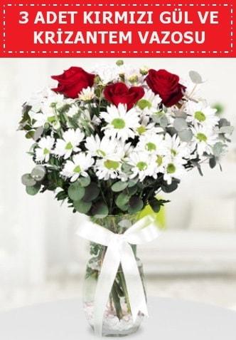 3 kırmızı gül ve camda krizantem çiçekleri  Kastamonu çiçek gönderme
