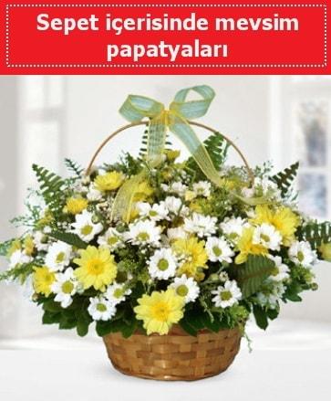 Sepet içerisinde mevsim papatyaları  Kastamonu ucuz çiçek gönder