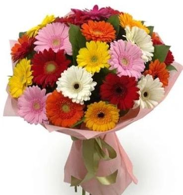 Karışık büyük boy gerbera çiçek buketi  Kastamonu çiçek satışı